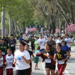Run for your cause Participant Satisfaction Survey